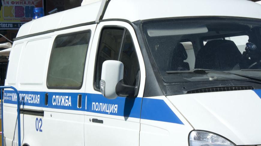 "Фото: Елена Андреева, ""«Мир24»"":http://mir24.tv/, кинология, полиция"