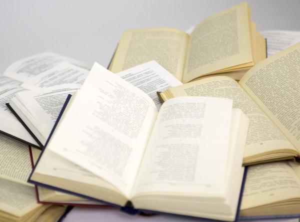 Всемирный день дарения книг отметили в Кыргызстане