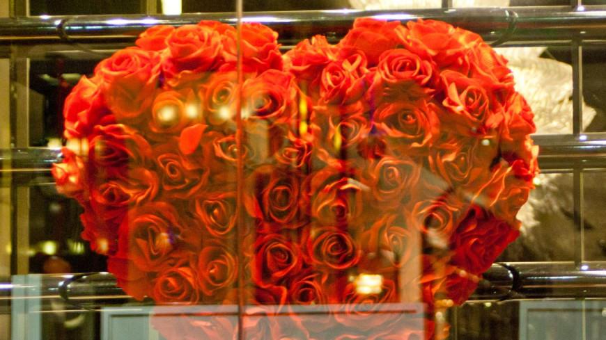 """Фото: Елена Андреева, """"«Мир 24»"""":http://mir24.tv/, розы, любовь"""