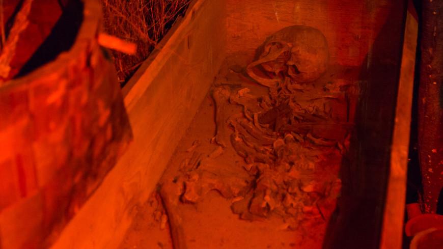 "Фото: Максим Кулачков, ""«Мир 24»"":http://mir24.tv/, гроб, кости, раскопки"