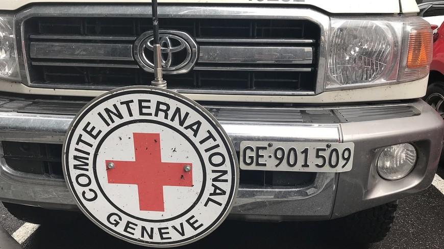 МККК будет работать в Новых Санжарах после инцидента с эвакуированными из Китая