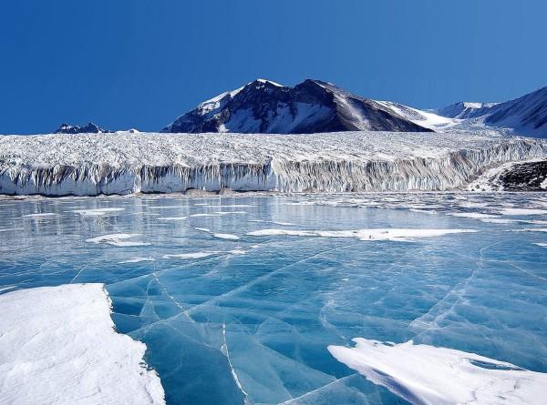 Вы эксперт по Антарктиде, если ответите на эти вопросы: тест от «Мира»
