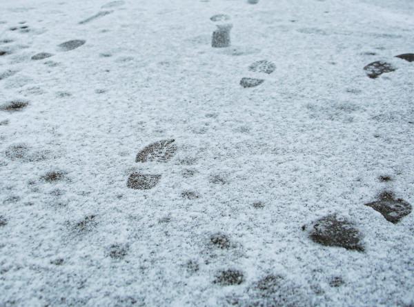 Аномальное тепло и резкое похолодание: Вильфанд рассказал о погоде в России на следующей неделе