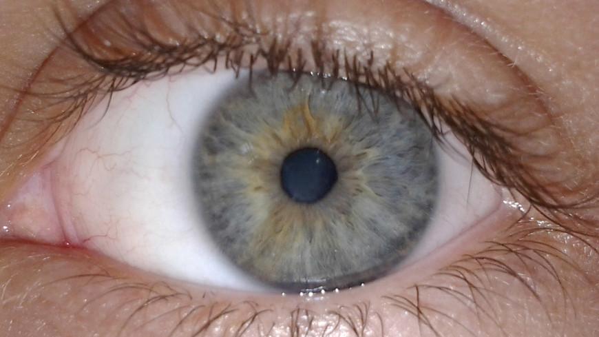 Раскрыта природа свечения глаз человека