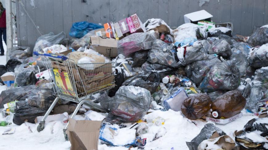 Мусорная свалка.,мусор, свалка, помойка,мусор, свалка, помойка