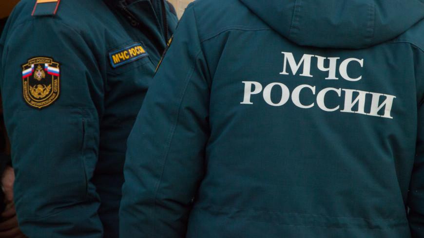 Пять человек пострадали при хлопке газовоздушной смеси в цехе в Белгородской области