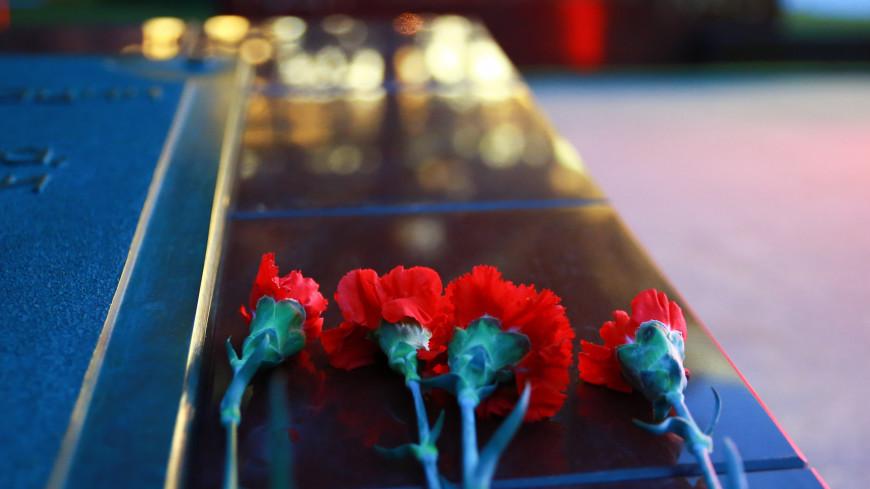 линия памяти, великая отечественная война, память, честь, свеча памяти, день памяти и скорби, скорбь, скорбеть, возложение,