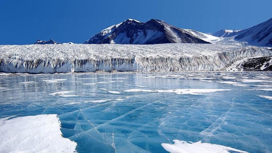 Британский пловец совершил заплыв среди льдов Антарктиды