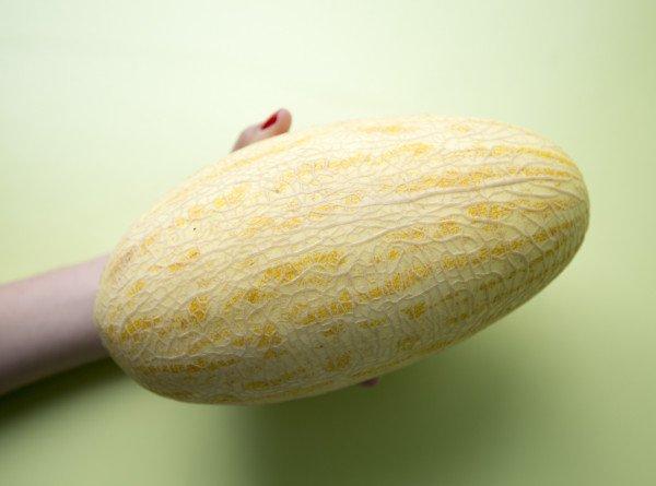 Новый урожай: как правильно выбрать дыню