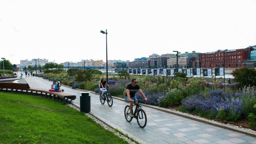 москва, город, улицы, прогулка, столица, мегаполис, велосипед, прогулка, отдых, выходные, расслабиться, велодорожка, парк, свежий воздух, лето, тепло,