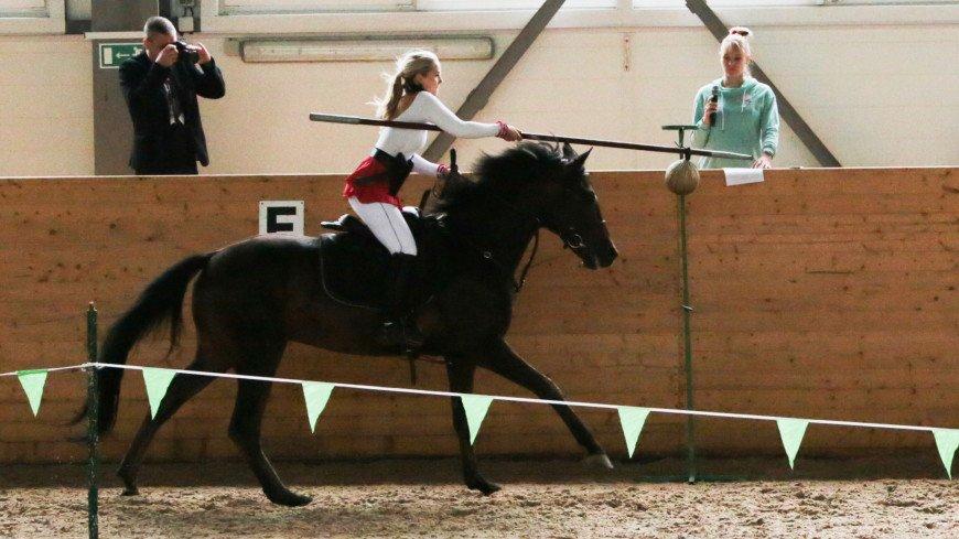 Первый в истории Чемпионат Мира по конноспортивной джигитовке. ,джигитовка, лошадь, конь, джигит, конный спорт, скачки,