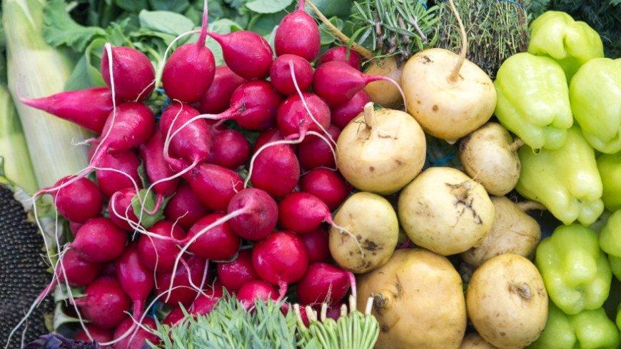 "Фото: Алан Кациев, ""«Мир 24»"":http://mir24.tv/, овощи, редиска"