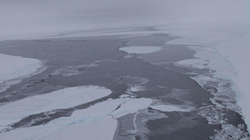 На дне моря Росса в Антарктиде впервые зафиксировали утечку метана