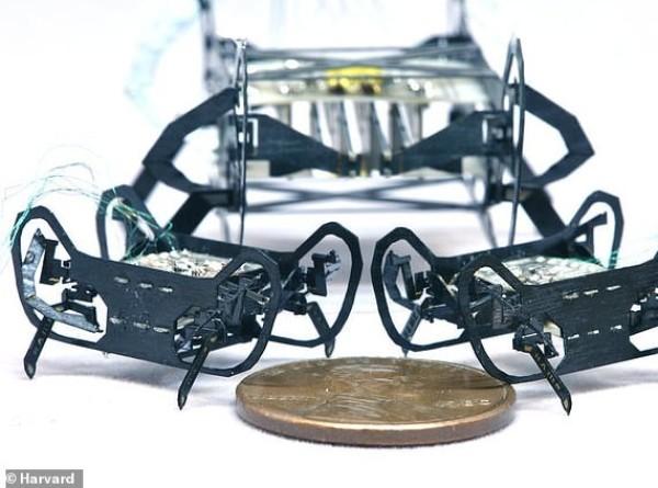 В Гарварде создали робота-таракана размером с пенни
