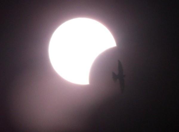 Солнечное затмение попало в объектив «МИР 24»