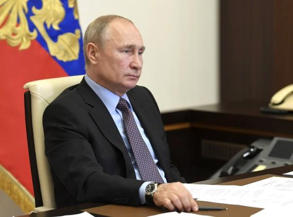 Путин пообещал помочь кошачьему приюту в Тольятти