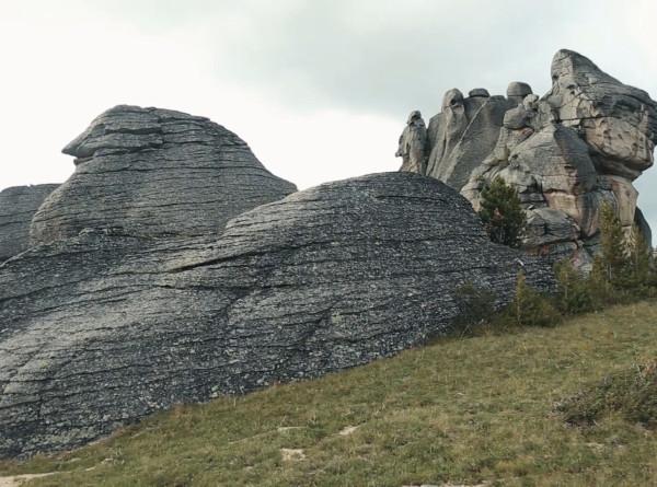 Причудливые камни, чарующие кедры и редкие растения: пять причин посетить Западно-Алтайский заповедник