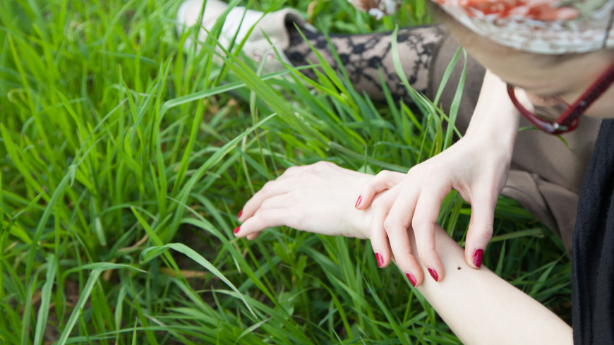 Девушка на природе,парк, природа, лес, девушка, трава, поляна, клещ, насекомые,