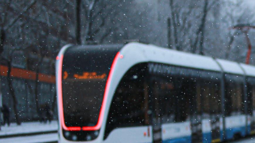зима, погода, снег, снегопад, снежинка, холод, лед, мороз, вьюга, метель, иней, трамвай, транспорт, общественный транспорт,