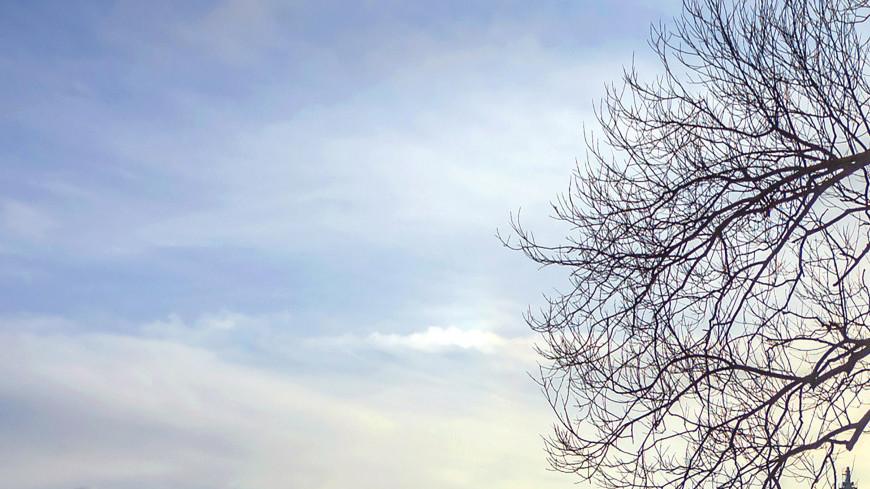 Зима в городе (снег, сугроб, холод, мороз, набережная, река, лед, дорога, дом, многоэтажка)