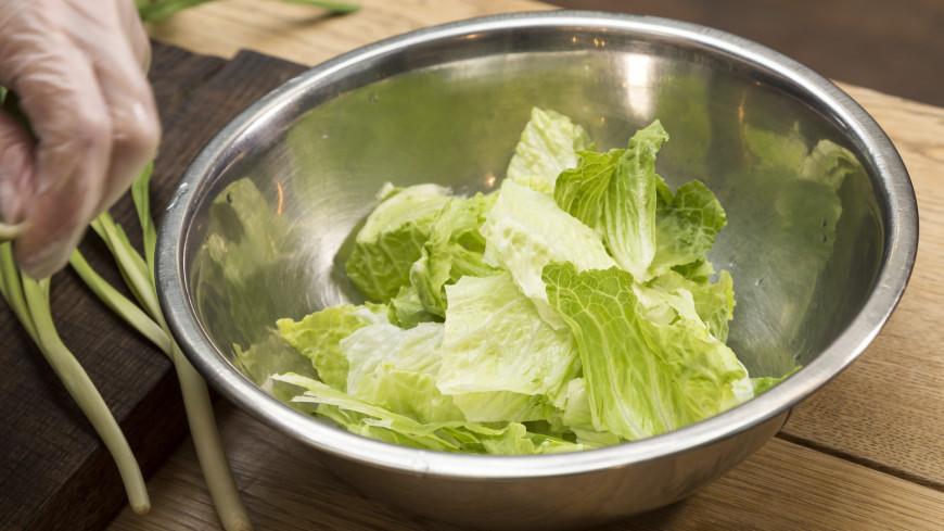 Из политика в сельхозпроизводители: экс-премьер Молдовы выращивает салат