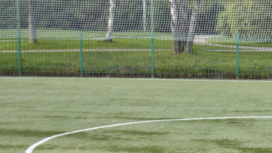 """Фото: Дмитрий Белицкий (МТРК «Мир») """"«Мир 24»"""":http://mir24.tv/, футбольное поле, футбол, спорт"""