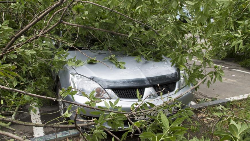 Непогода в Татарстане: с домов сорваны крыши, разбиты машины и порваны ЛЭП