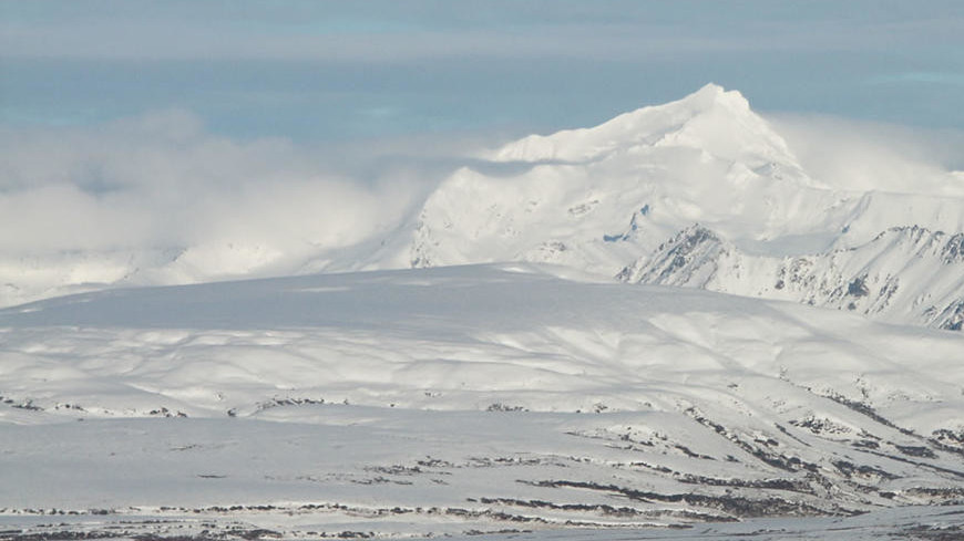 На Аляске нашли окаменелость «океанской ящерицы» возрастом 200 млн лет
