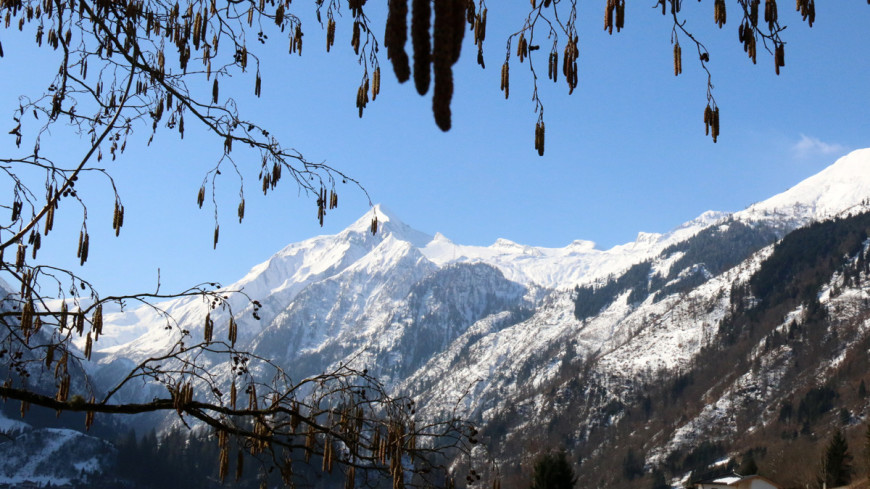 Немецкие ученые разрешили спор о процессах, влияющих на высоту гор