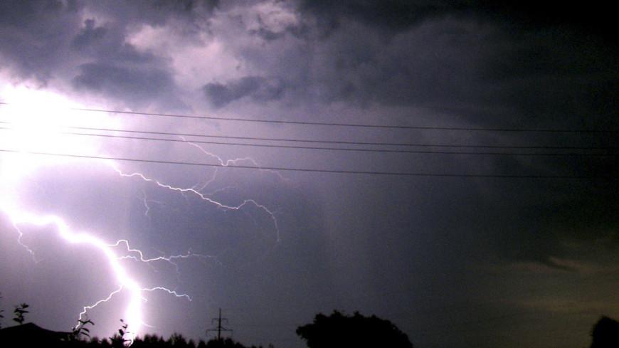 В Новосибирской области мужчину убило молнией
