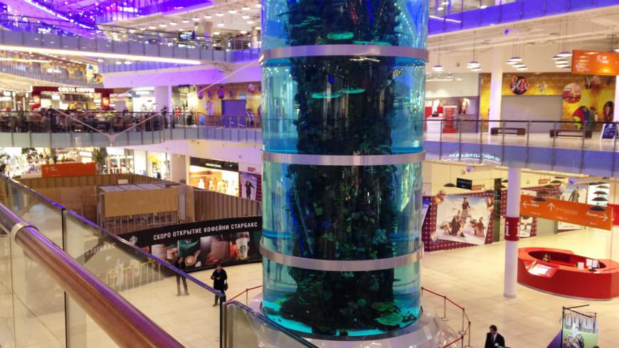 """Фото: Светлана Родина, """"«МИР 24»"""":http://mir24.tv/, магазины, торговый центр"""