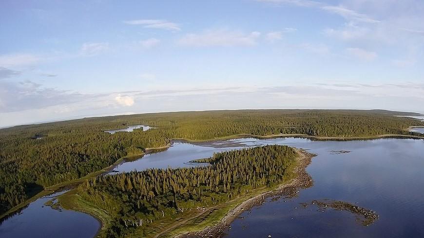На сохранение Соловецкого архипелага направят госпомощь