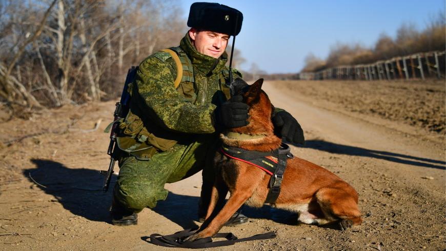 На страже границ: история пограничной службы в России