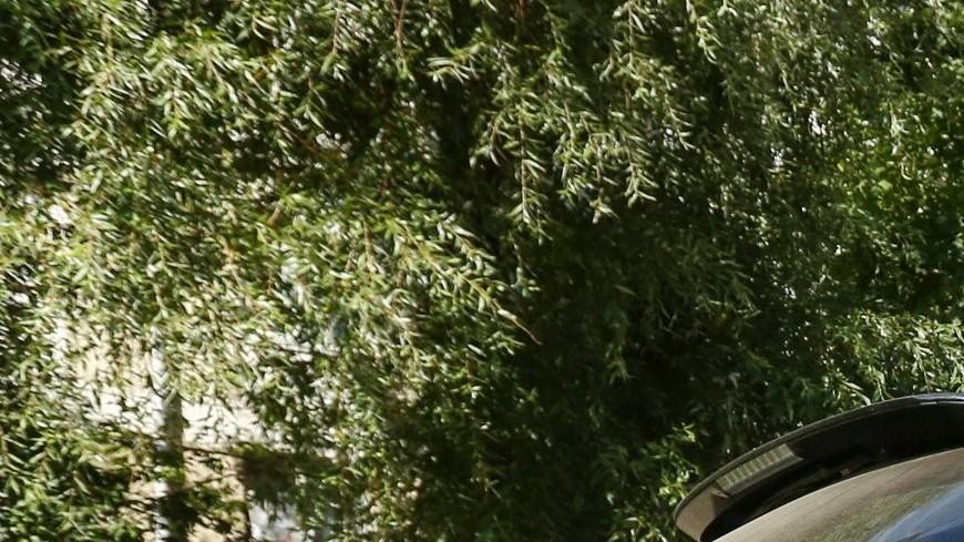 В Москве начали устанавливать приподнятые над дорогой «зебры»