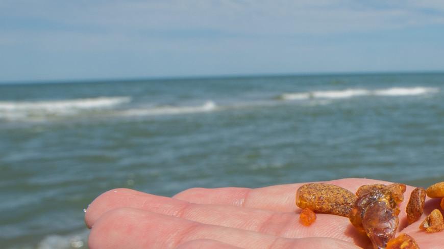 Зеленоградск, Море, Пляж, янтарь