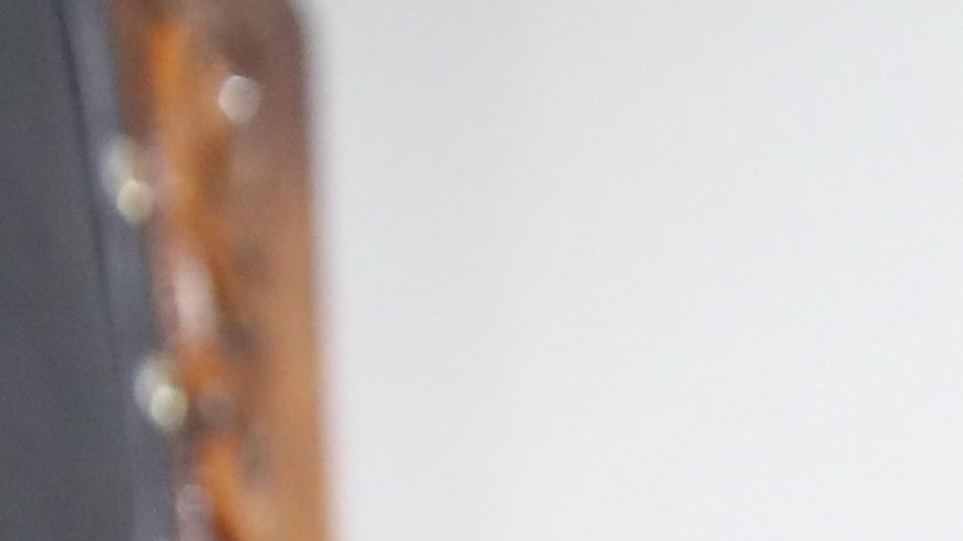 Один хорошо, а два – лучше: у кота Бегемота в Музее Булгакова появился сменщик