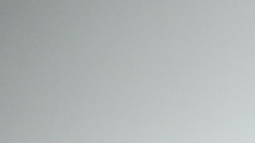 Туктамышева: Я пыталась поддержать Загитову в Японии
