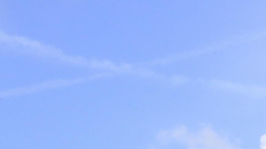 Французские архитекторы рассказали, какой должна быть крыша Нотр-Дама
