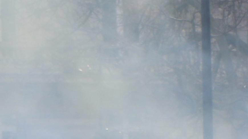Погромы по графику: «жилеты» протестуют в Тулузе на фоне горящих машин
