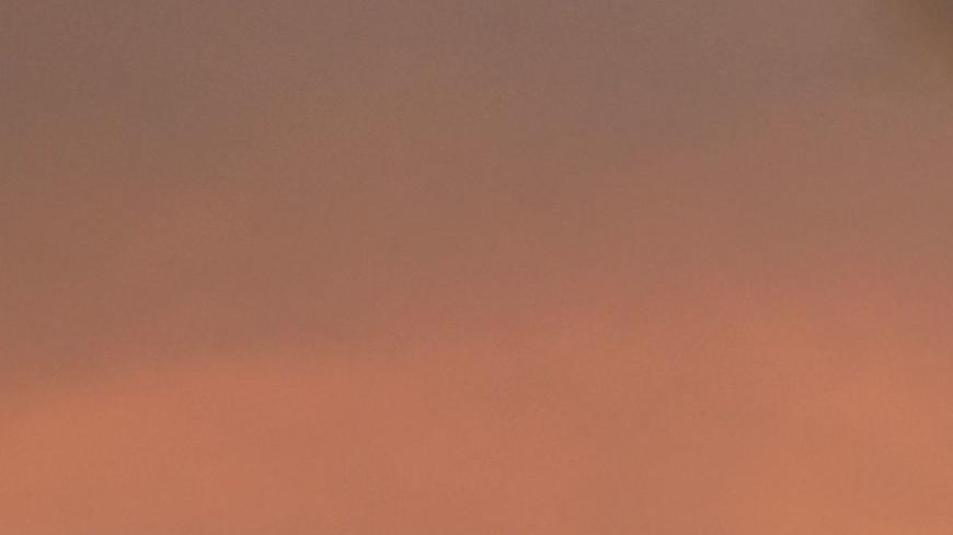 Обзор зарубежных СМИ: новая Великая депрессия и годовщина пожара Нотр-Дам-да-Пари