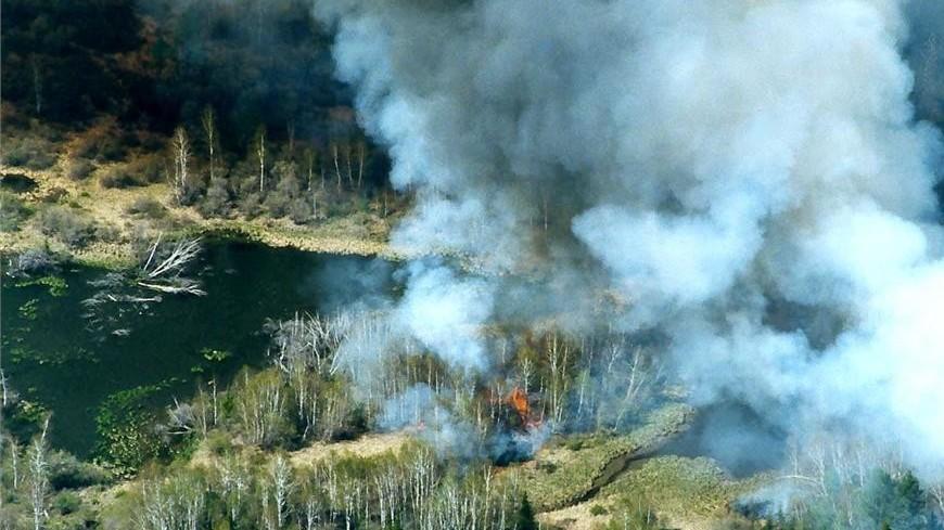 В России за сутки специалисты потушили 90 природных пожаров