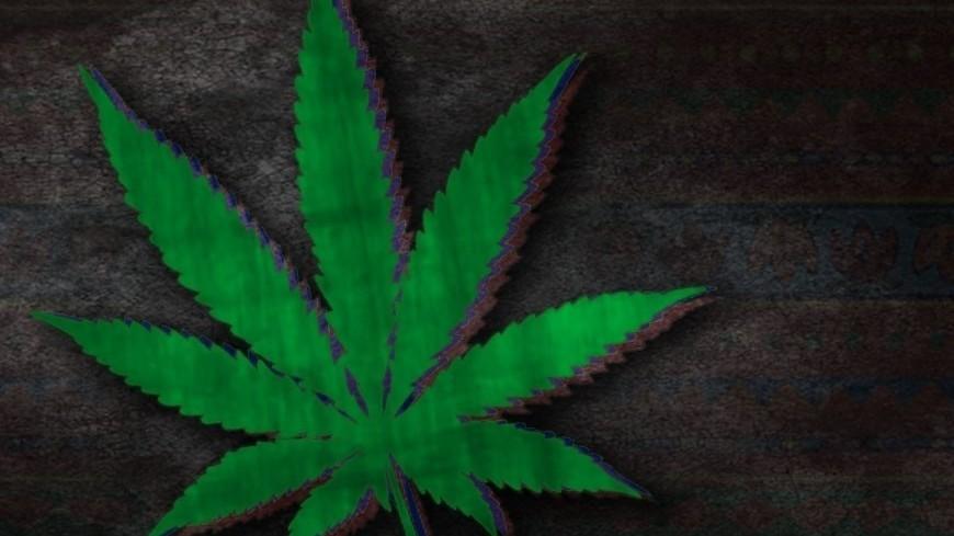 Грудь и марихуана сталин курил марихуану