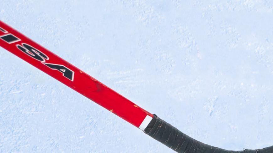Хоккей,зима, зимние виды спорта, хоккей, клюшка, шайба, ,зима, зимние виды спорта, хоккей, клюшка, шайба,