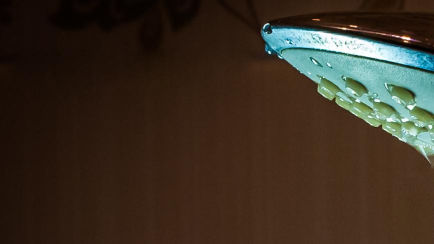 Душевая лейка,ЖКХ, душ, душевая лейка, ванна, ванная комната, вода, водопровод, канализация, ,ЖКХ, душ, душевая лейка, ванна, ванная комната, вода, водопровод, канализация,