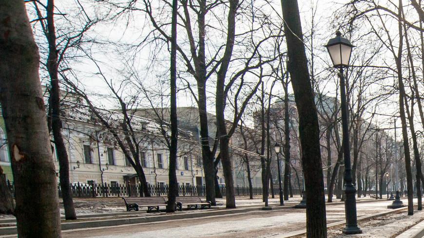"Фото: Николай Костюшин (МТРК «Мир») ""«Мир 24»"":http://mir24.tv/, улицы, весна, москва, парк, улица москва, улица"