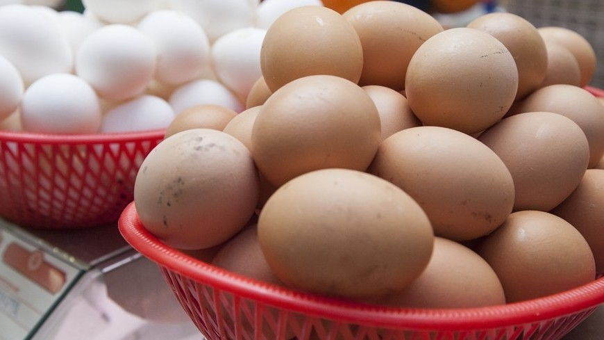 "© Фото: Максим Кулачков / ""«МИР 24»"":http://mir24.tv/, яйца"
