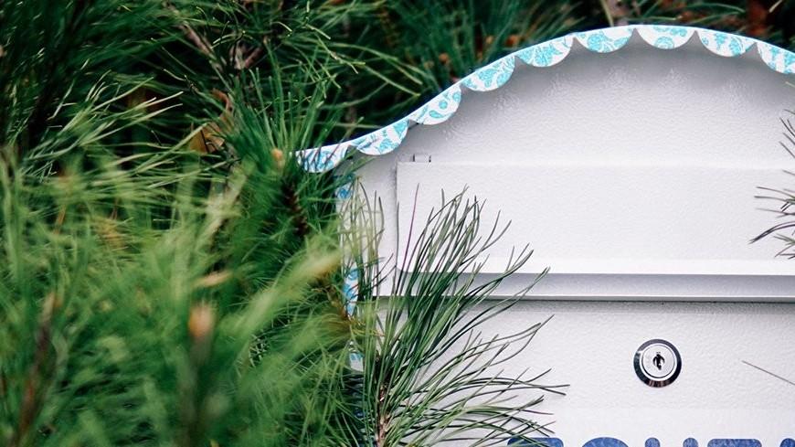 В 17 московских парках заработает «Почта Деда Мороза»