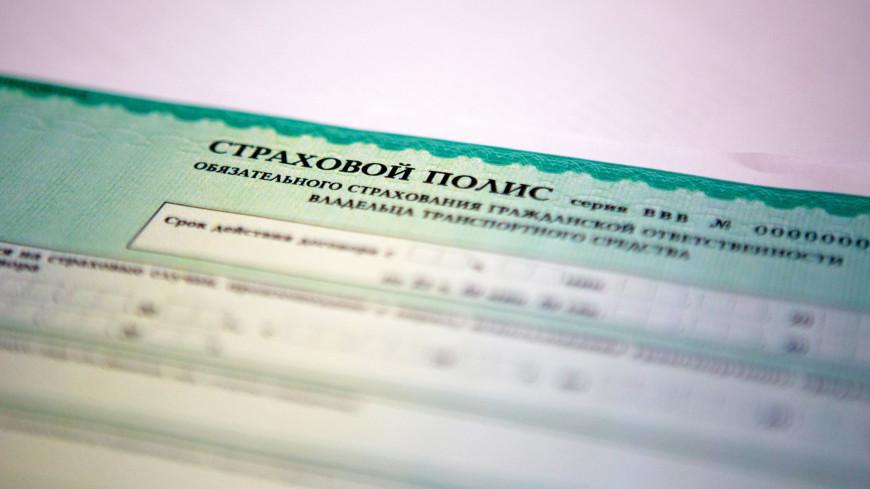 Новый формат полиса ОСАГО вступил в силу в России