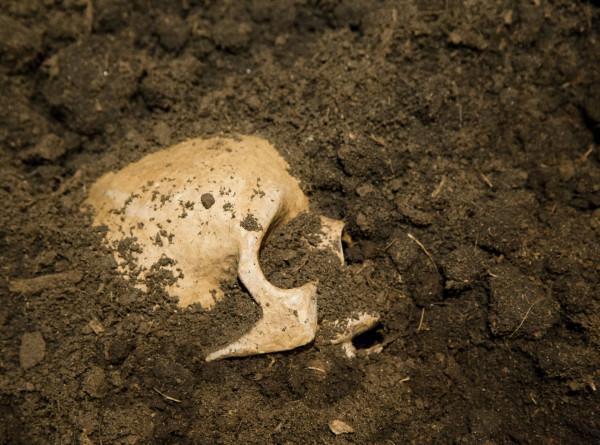 Во Франции раскопали могилу «принцессы» железного века