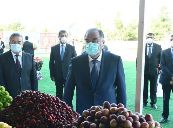 Рахмон посетил с рабочим визитом Дангаринский район Хатлонской области